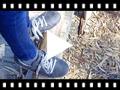 Video from Zapatillas Sneakers para Niños Serraje