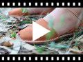 Video from Menorquinas Niños Avarcas nobuck
