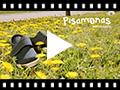 Video from Zapato Blucher Velcro Suela Alpargata